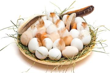 Eggs Nest