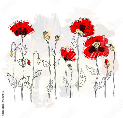 Tuinposter Abstract bloemen Red poppies on a white background