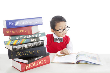 Pupil studying by reading books