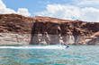 Lake Powell, in Glen Canyon  in Utah and Arizona - 43873494