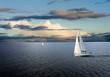 Sail boat - 43878494