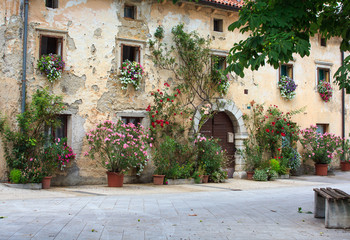 Flowers pots in the facade house