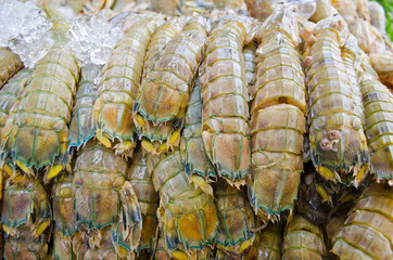 Mantis shrimp with ice in fresh market in Thailand