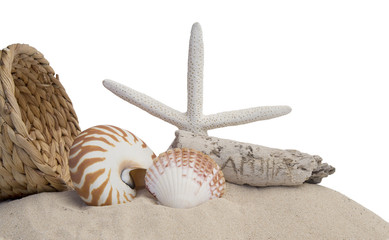 seashells, starfish and sand on white background