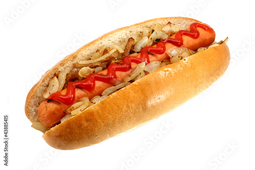 Griiled hot dog with onions