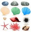 Conchiglie Molluschi Ciotoli Mare-Marine Life Elements Icons