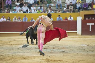Torero citando al toro desde lejos.