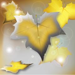 autunno in oro ed argento