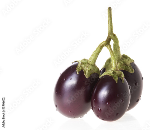 Small asian eggplants on a twig