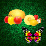 Fruit vegetables and butterflies