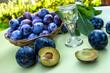 Plums - damson and plum brandy