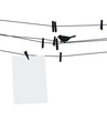 Blank paper sheet on clothesline with clothespins and bird