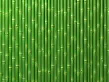 Mur de bambou.