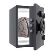 brain protected in a safe