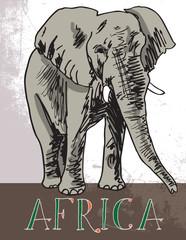 Africa. Vector illustration