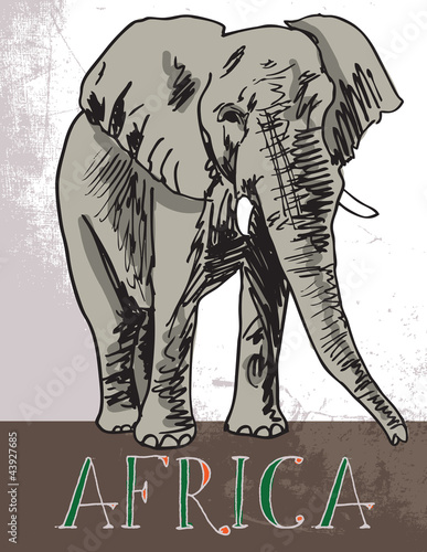 Africa. Vector illustration