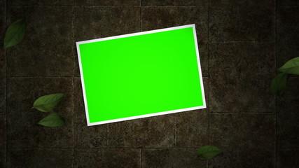 Green Screen Photos On Ground
