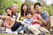 Portrait Of Multi-Generation Chinese Family Relaxing In Park