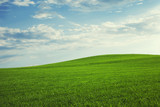 schöne grüne hügel mit blauem himmel