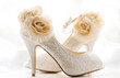 Stylish & Elegant Bridal Wedding Shoes