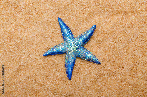 Sea stars on the sand