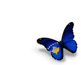 Kosovo flag butterfly, isolated on white background poster