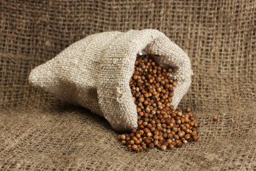 Coriander seeds in sack on canvas background close-up