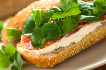 Salami, cream cheese and watercress sandwich