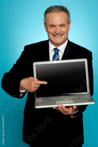 Aged corporate male pointing at laptop screen