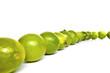 Zitrusfrüchte © Matthias Buehner