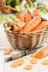 Fresh carrot in the basket