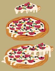 Italian pizza (salami, mozzarella, olives, tomato sauce, etc...)