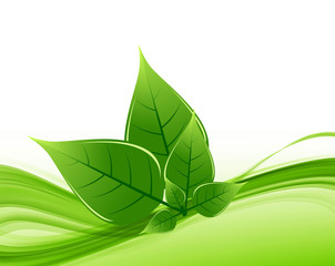 abstract Vector Natural eco green lives wave shiny design