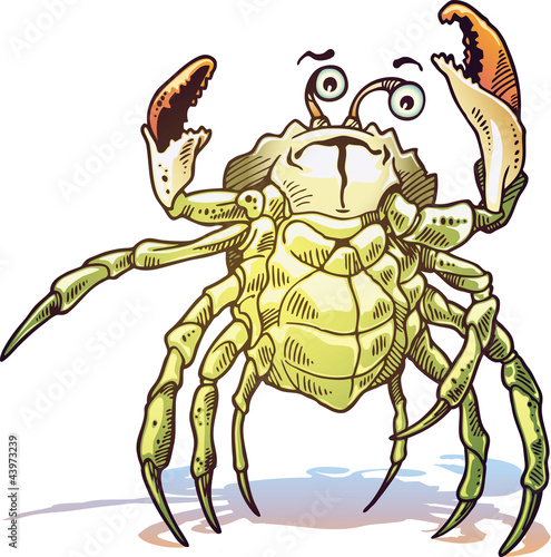 The illustration of the sea crab.