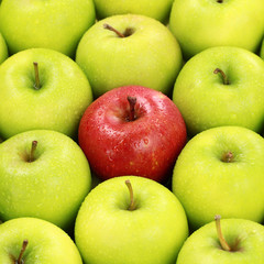 Einsamer roter Apfel