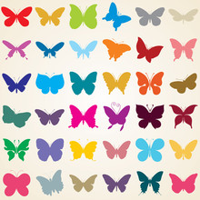butterflies s, set of various shaped butterfly
