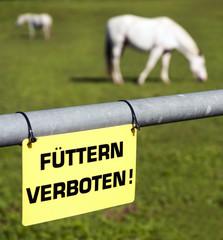 Füttern verboten Schild an Pferdekoppel
