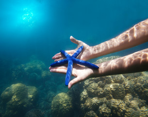 hands holding big blue starfish