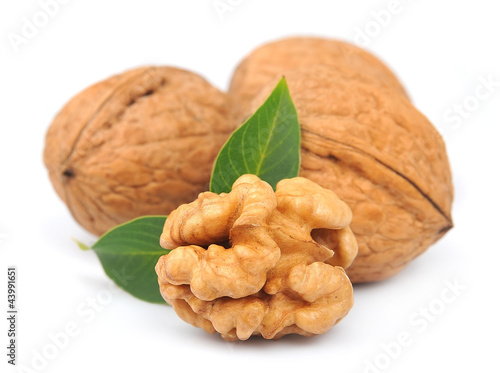 walnuts with leafs