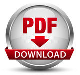PDF Download Button Silber Metallic