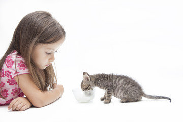 kitten with little girl