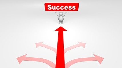 many way,s but one way of success