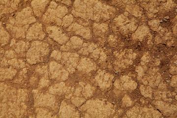 Trockener Boden