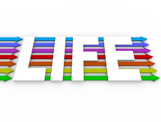 Life Word Colorful Arrows Experience Diversity