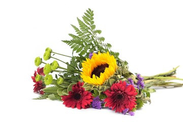 Mixed flowers to white background