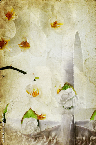 White orchid over vintage background