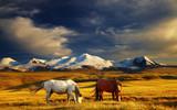 Fototapete Sonnenuntergänge - Altai - Hochgebirge