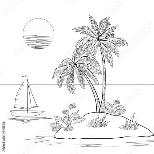 海岛办事处海洋海滩漫画热带生态学异国情调白色绘图背景自然船花载体