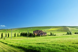 Fototapety Tuscany landscape with typical farm house