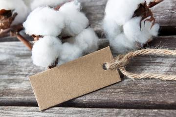 Baumwolle - Cotton